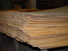 Мозаичный набор: лента для стягивания и подготовка шпона